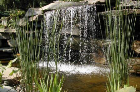 Декоративный водоем