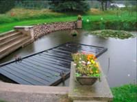 Декоративный водоем представляет собой историческое продолжение искусственных прудов, где плавают золотые рыбки, часто устраиваемых в домах китайских вельмож 7-8 веков.